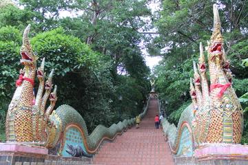 Viaje chiang rai viaje a tailandia viajar a tailandia for Piscina triangulo de oro